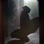 True Blood Season 3, Episode 5 Recap Trouble