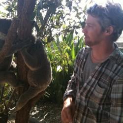Todd Lowe meets his first koala in Australia