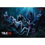 True Blood Season 3 now available for pre-order