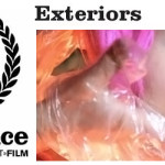 Allan Hyde's film 'Exteriors' Nominated for Best Debut Film