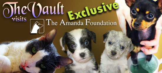 The Vault Visits The Amanda Foundation