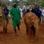 Kristin Bauer Van Straten in Kenya at Sheldrick Elephant Orphanage