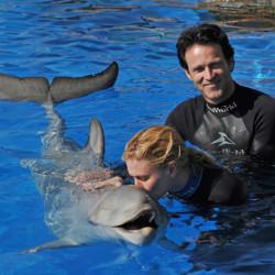 Anna Paquin and Stephen Moyer swim with dolphins