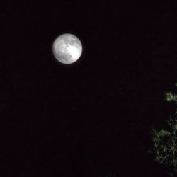 Random Thoughts – Episode 4.06 – I Wish I Was The Moon