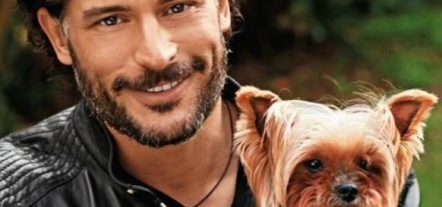 Joe Manganiello on the cover of the Fall 2011 Healthy Pet Magazine
