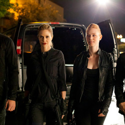 Vote True Blood's Vampires for Top 50 Vampires of All Time