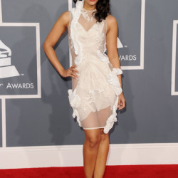 Janina Gavanker Heats up the Grammy Awards Red Carpet